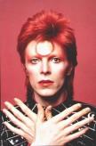 Mullet David Bowie